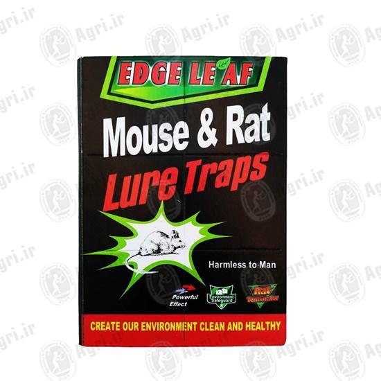 چسب تله موش کتابی