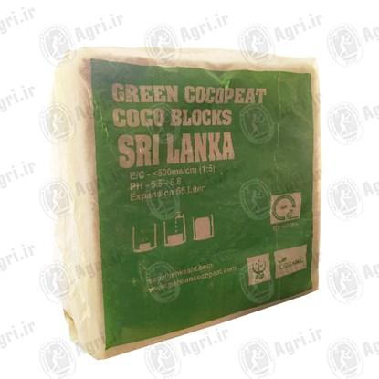 کوکوپیت کوکو بلوکی سریلانکا