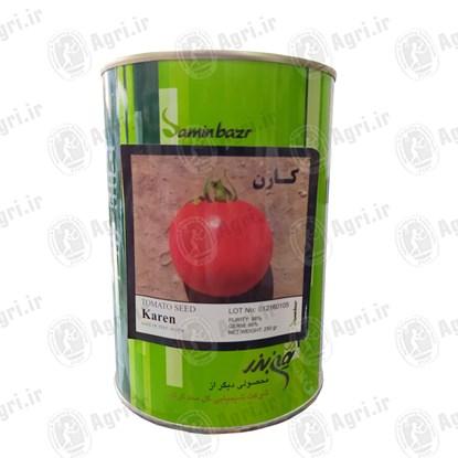 بذر گوجه کارن