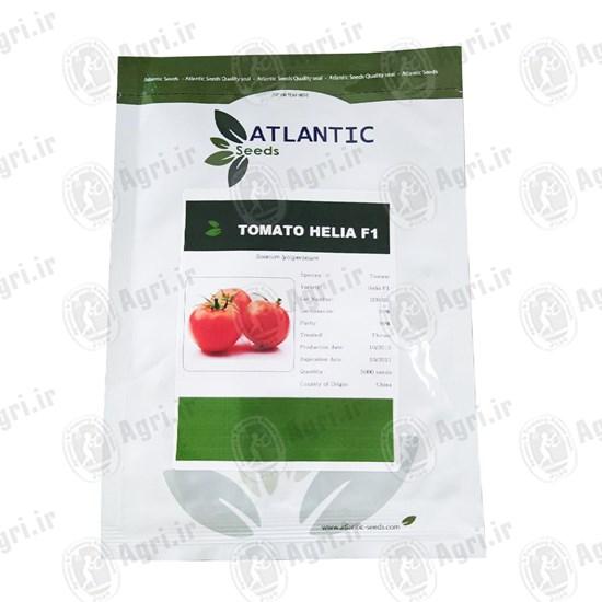 بذر گوجه فرنگی HELIA F1