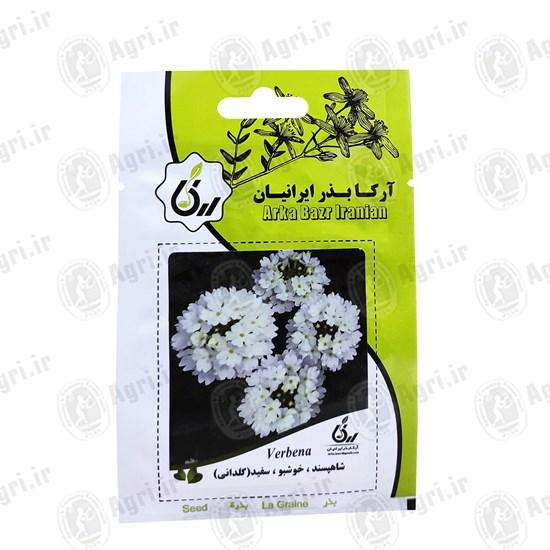 شاهپسند خوشبو سفید گلدانی