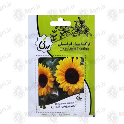 بذر گل آفتابگردان زینتی پابلند زرد
