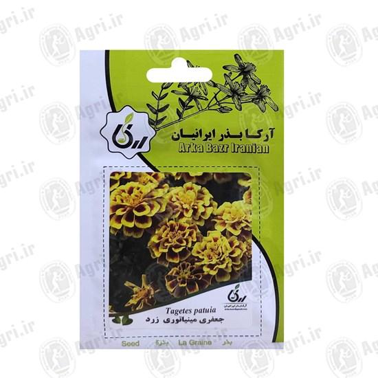 بذر گل جعفری مینیاتوری زرد